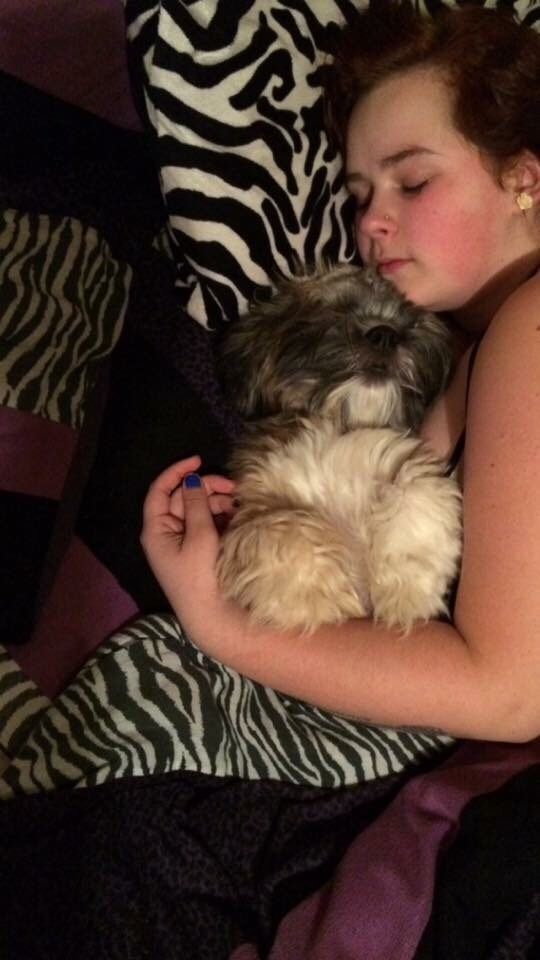 I hope these tips made you want to get a shih tzu because my shih tzu is my best friend and i wouldn't trade her for the world and for all whos wondering the princess in the pictures is a female shih tzu Marley she is 1 years old and the best dog in the world🌎