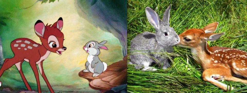 """Bambi"" - Bambi and Thumper"