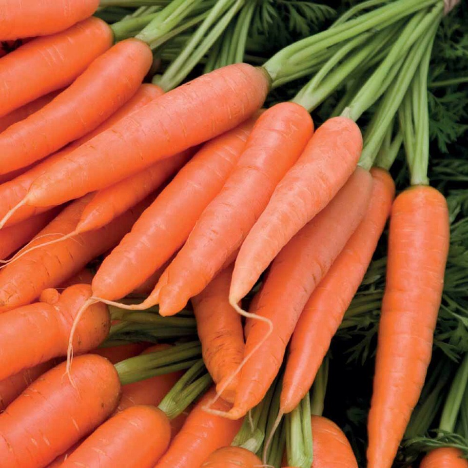 Beauty Foods Tip---Carrots can help protect the outer layer of your skin and prevent premature aging.