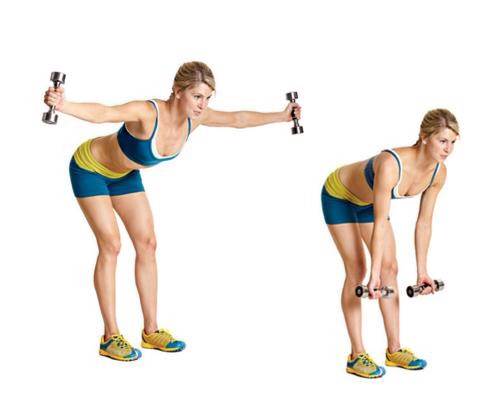 6. Rear Lateral Raise (4 sets, 20 reps)