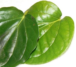 Try chewing 1 or 2 betel leaves to relieve your headache.