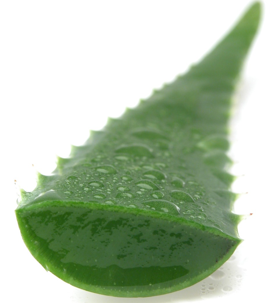 It will dry fast so skin might look like its pilling or shedding but it's just dry aloe.
