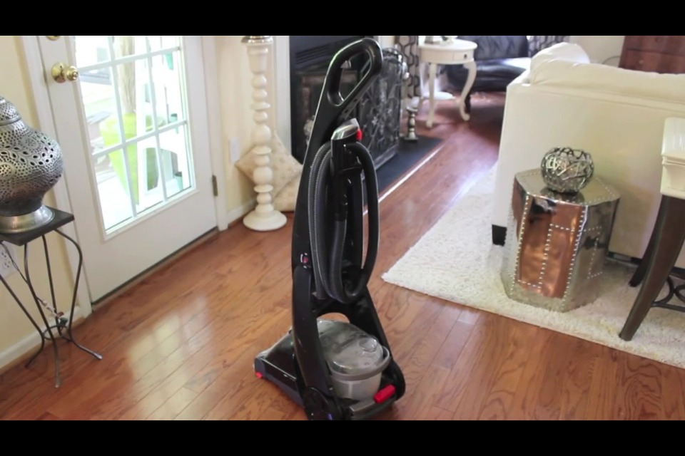 Invest in your own carpet cleaning vac.  When you hire someone to clean your carpets their machines have been in some icky households with feces and such and then their gonna bring that in your home?  YUCK!