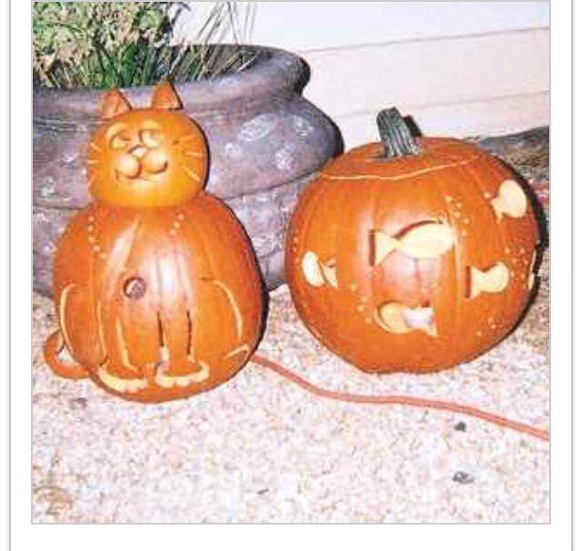 Cat & fish pumpkin