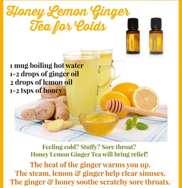 Ginger contains silicon which enhances skin, hair, teeth & nails. It helps  assimilate calcium and reduces inflammation in the bone tissue aiding the  ...