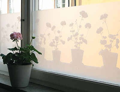 Cover your windows with frosty film