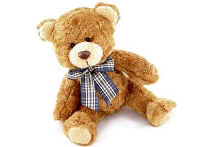 A teddy so I can hug it