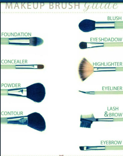 b4411616 239c 451b b76c 571e9e035713 makeup brush guide! by yuliana 🎀✌ musely