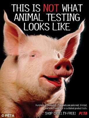 animal testing can cause animal sudden