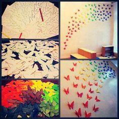 Rainbow butterflys
