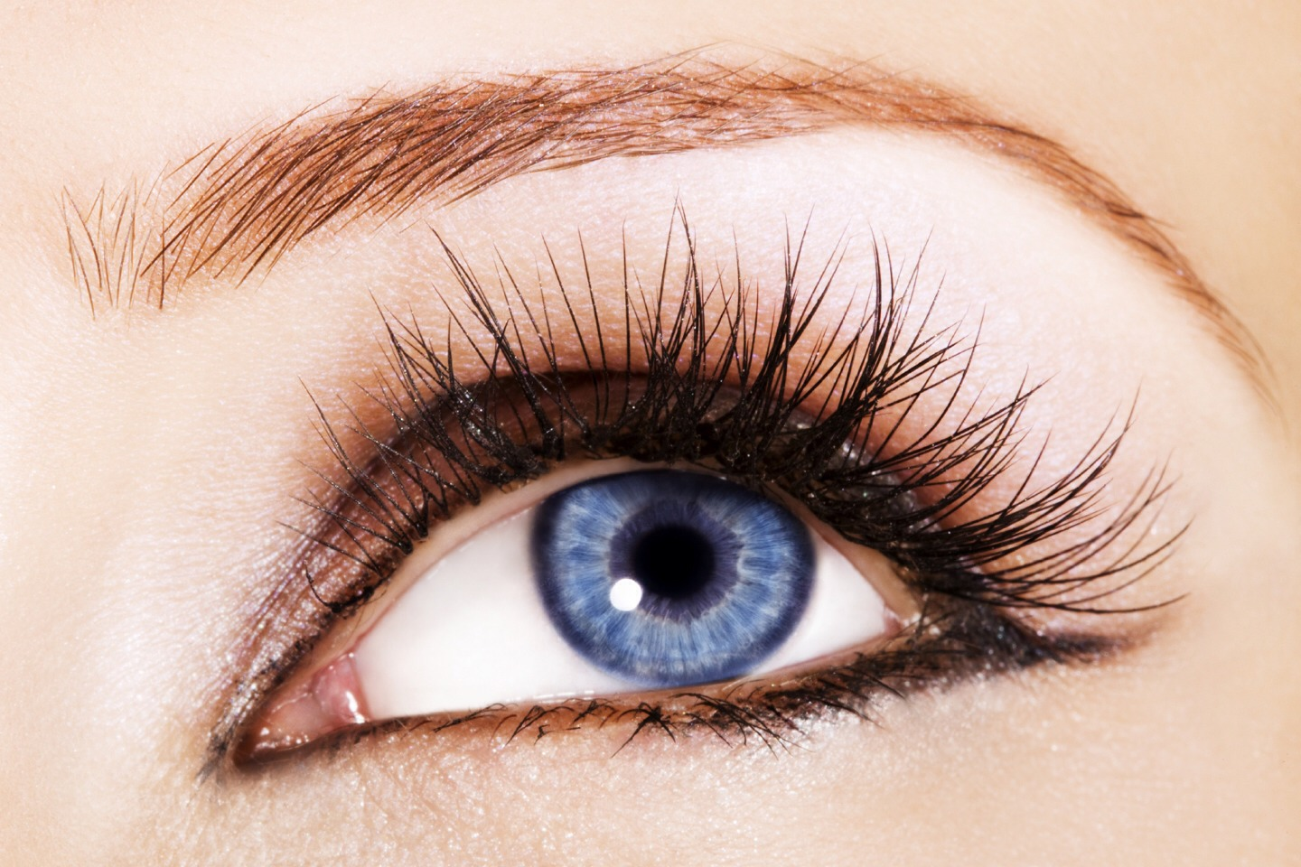 2. To apply mascara, start at the bottom of your lashes, and do a zigzag as you go to the the top of your lashes for this helps prevent clumping. 😺 Then, repeat the step for you upper and lower lashes 2X