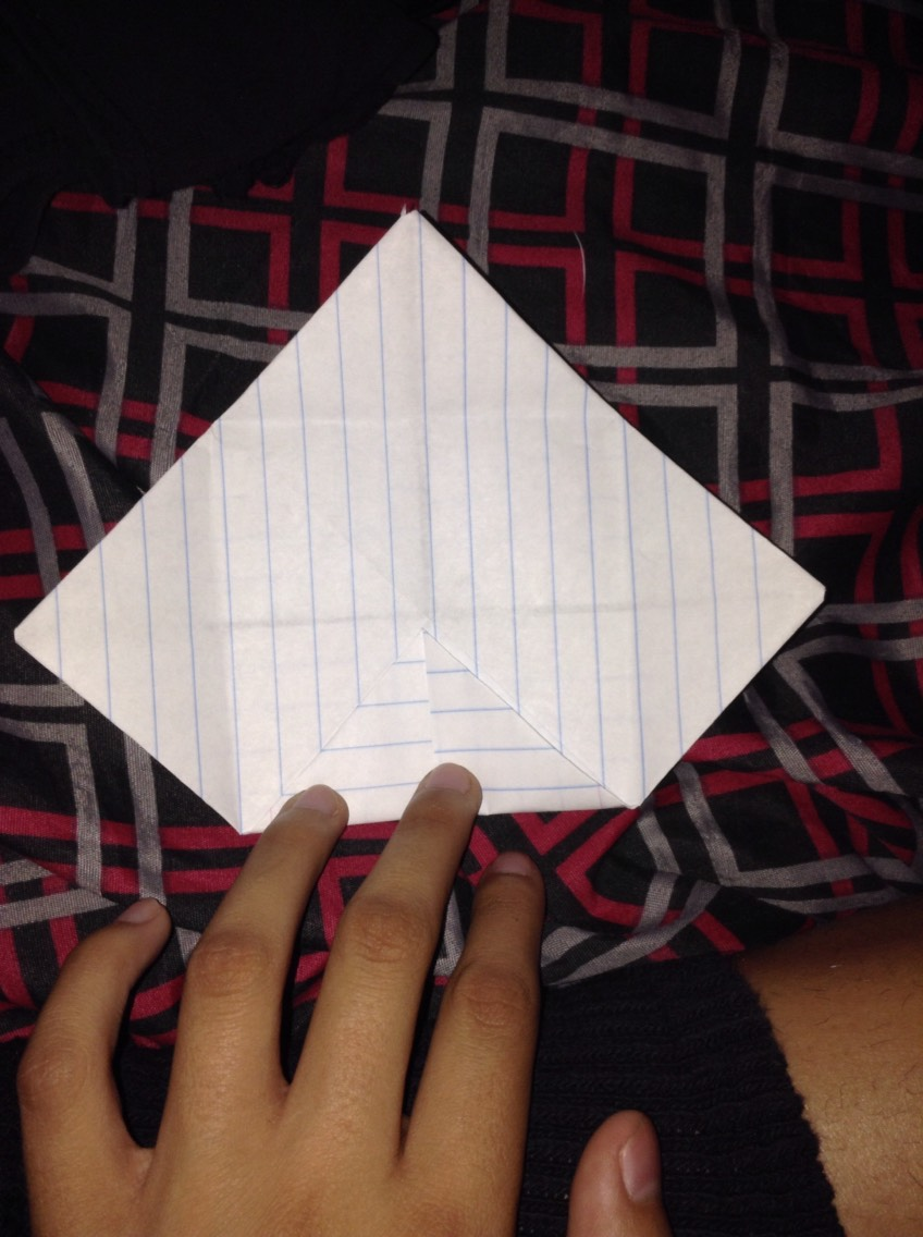 5) Do it again on the other side of the paper. (Ignore the leg)