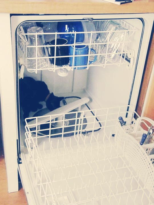 Save time by using your dishwasher to wash things other than dishes.   Examples of things you can clean in your dishwasher: plastic hairbrushes and combs, rain boots, flip flops, baseball caps, broom heads, dustpans, potatoes, garden tools, pet toys, ceiling fan faceplates, mop heads, etc