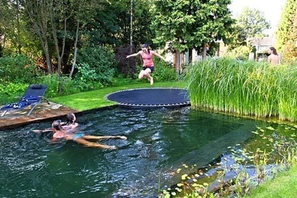 Trampoline and Pool