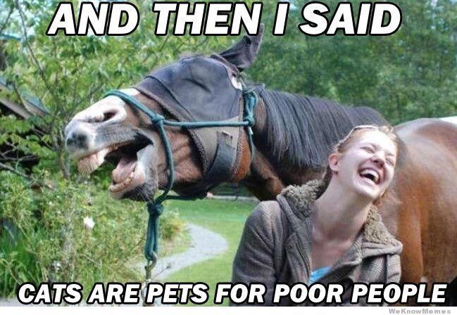Hope this made you smile!!  Amanda Alcala