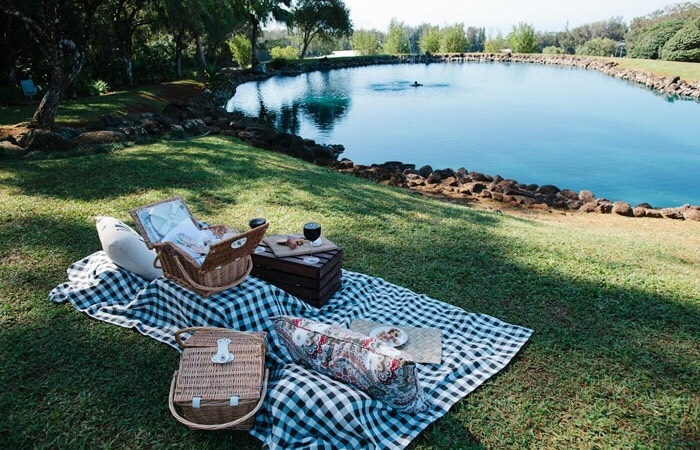 Scenery is a big key to a fun and memorable picnic!