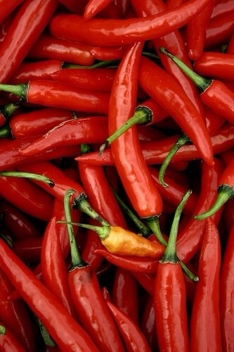 10. chili peppers