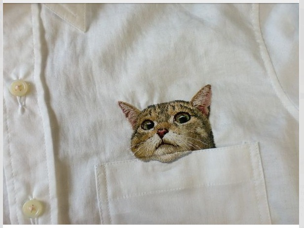 Lol. Please like if you want a kitty in your pocket!!
