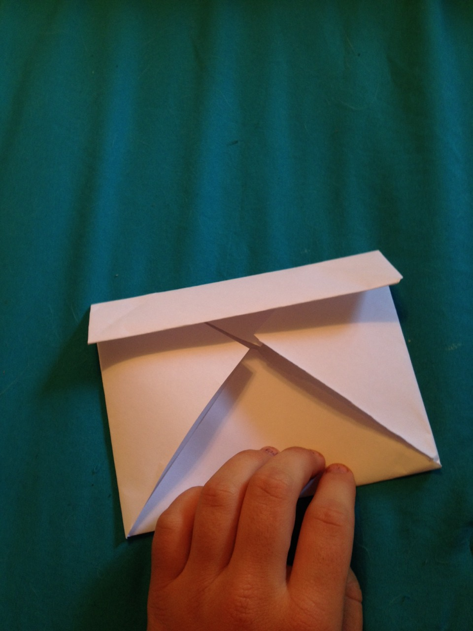 Fold in the outer edges.