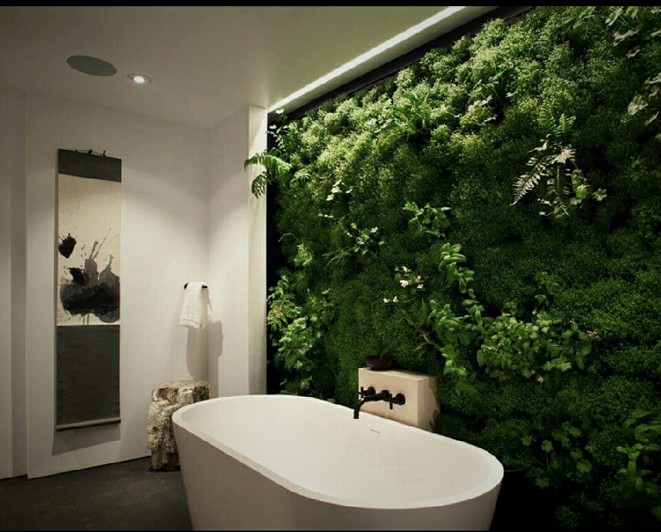 Grow moss on a ladder for a cool earthy tone in any room in the house.