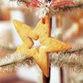 STAR SUGAR COOKIES🔗