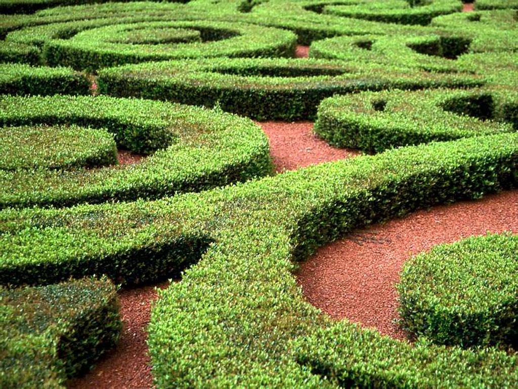 You can make a maze out of your lawn mower for your children and to make it more maze like you can add bushes at the side.  Even if you have a small garden you can make a small one with out bushes!