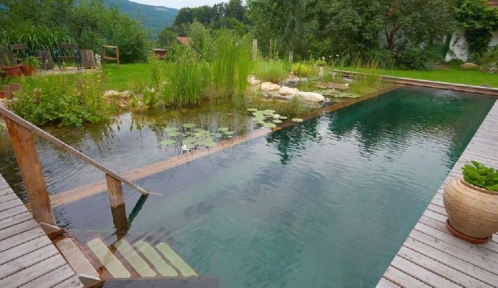 Without these chemicals you will need to set aside about 50% of the pools' surface area for these aquatic plants. These pools can add a good source of water in the dry months also. You will find an easy tutorial at the end of this tip but first, here is a little inspiration…