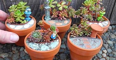 http://www.goodshomedesign.com/create-miniature-garden/