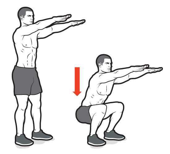 Do 1200 squats