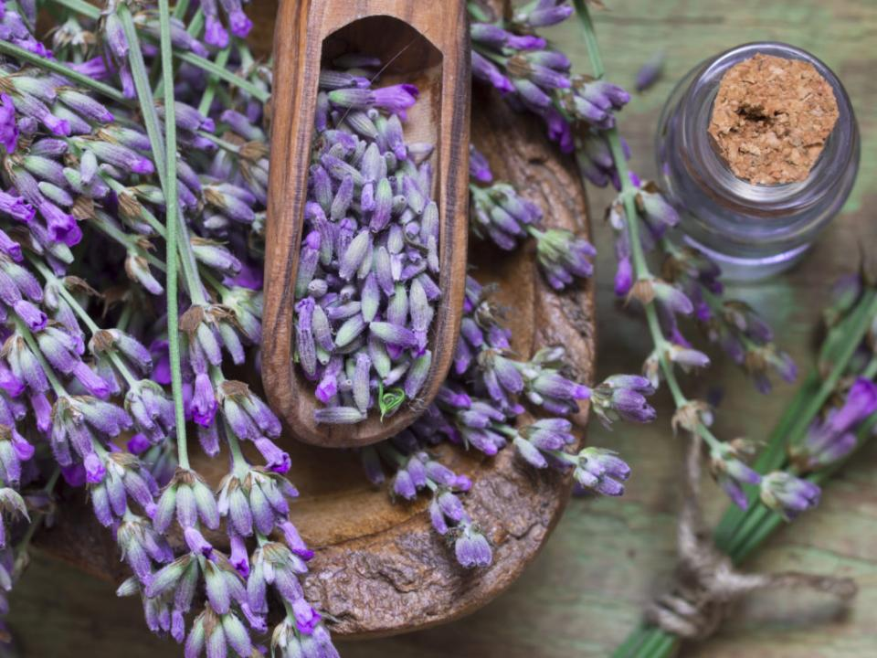 Lavender has a relaxing and beautiful aroma. Soaking in lavender will provide a relaxing and calming effect.