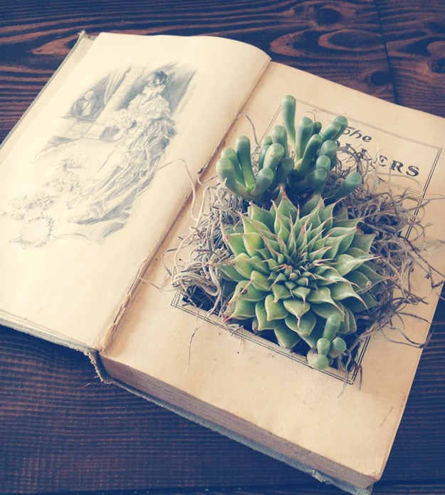 Book Planter #1