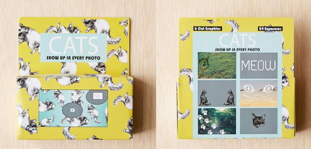 This disposable camera that'll make sure cats make it into all of your ~special moments.~