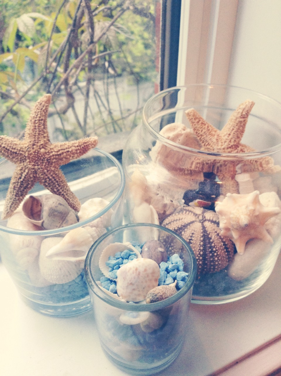 For those one I took :  Some jars Rocks Shells Starfish