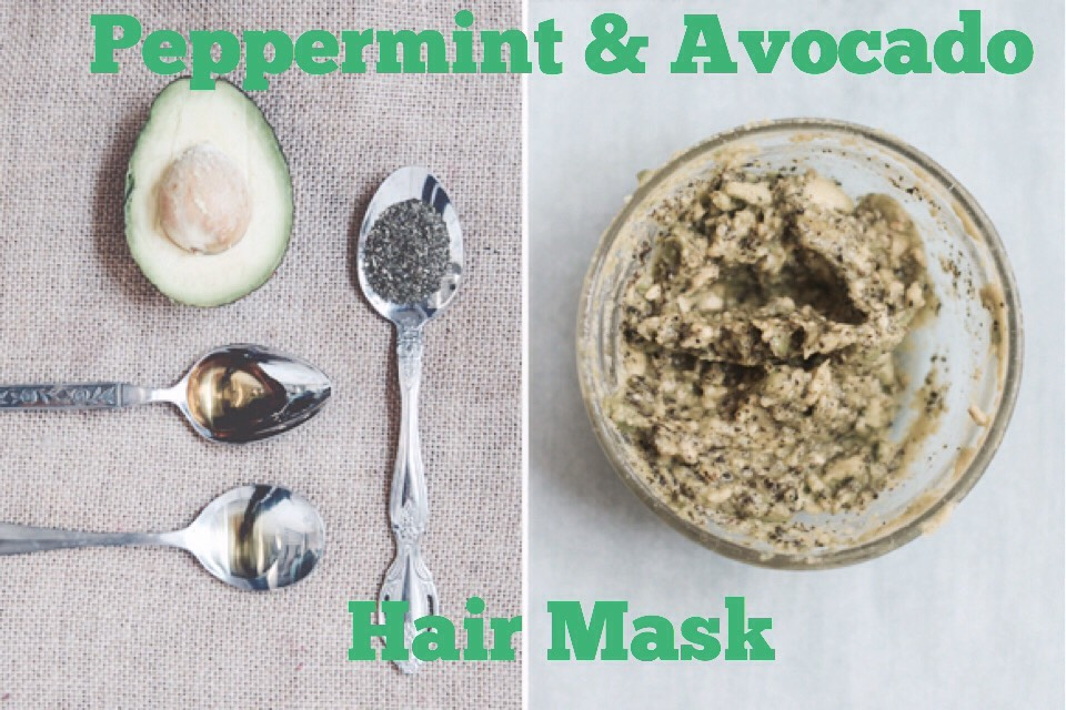 PEPPERMINT + AVOCADO HAIR MASK | The avocado, honey, + olive oil lock moisture into your hair, while the peppermint tea invigorates the scalp, leaving you with moisturized locks!  INGREDIENTS |  (+) 1 avocado (+) 1 tbsp honey (+) 1 tbsp olive oil (+) 1 tbsp loose peppermint tea  INSTRUCTIONS | Mash up your avocado, add in the honey, olive oil, + tea, + mix well. Massage into your hair, concentrating on your ends, + let sit for about 30 minutes. Wash + condition your hair as usual.