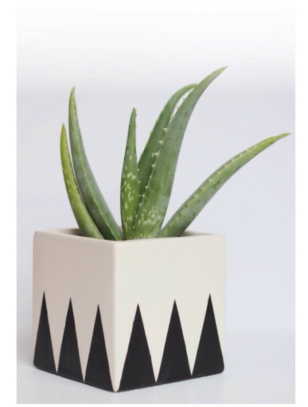 "You will need: a 5"" square planter, a paint brush, craft paint, tape"