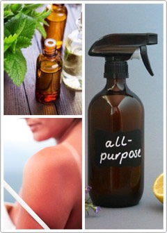 """🌱Helps heal + soothe sunburns. 🌿Heals skin infections naturally. 🍃Relieves itchiness from rashes as well as helps reduce rashes. 🌱Can be used as an all-purpose cleaner: Fill a """"glass"""" spray bottle with 1-2 tsp. of tea tree oil + rest of the bottle with water. 🌿Treats acne."""