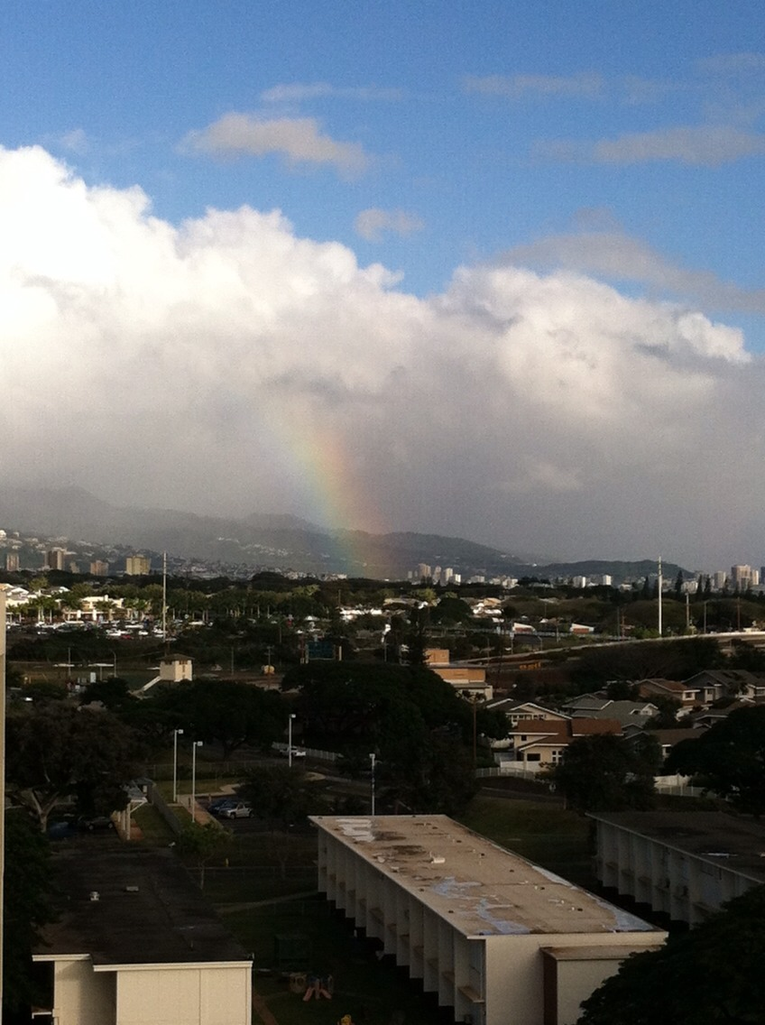Rainbow! They occur quite frequently in Hawaii.