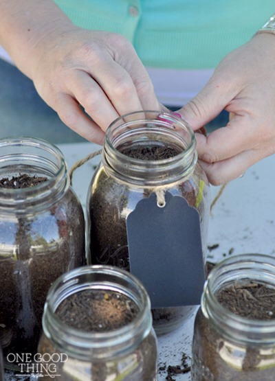 Affix some sort of tag to your jars to aid in identifying them as they sprout.