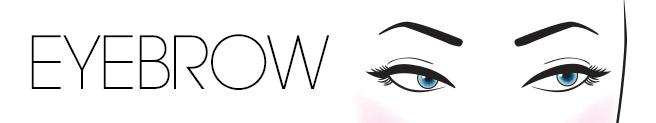 Always apply your brow pencil or powder to the upper portion of the eyebrow to lift your face up.