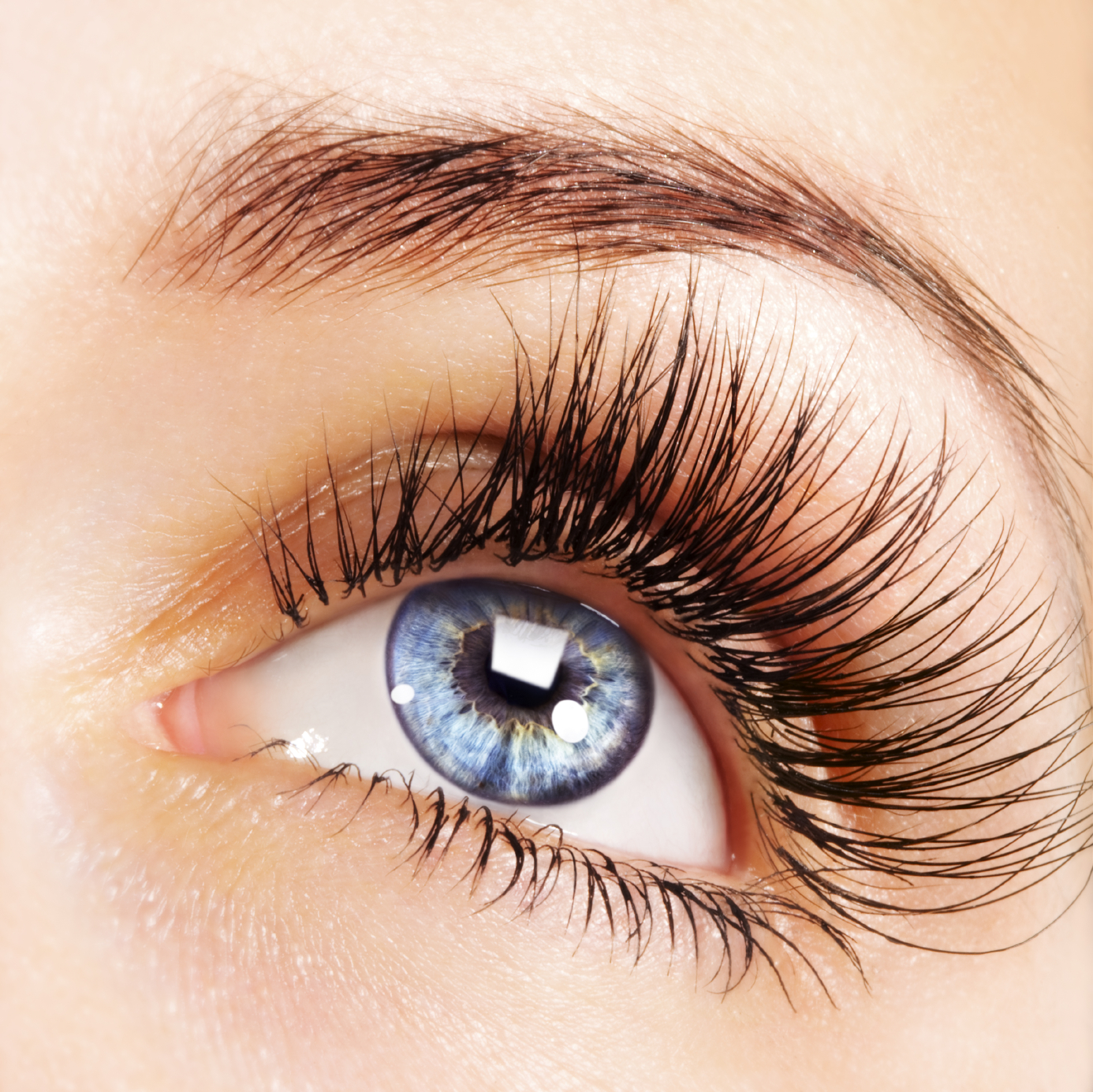 7.it makes your eyelashes and eyebrows thicker and longer