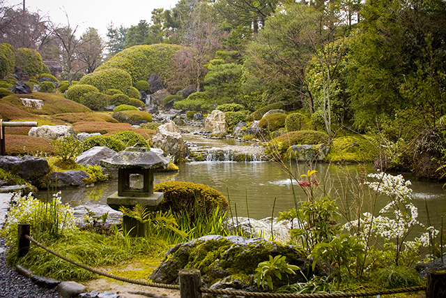 Zen garden**