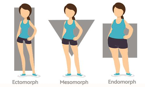 This Is What Your REAL Body Type Is by Sarah Healy - Musely