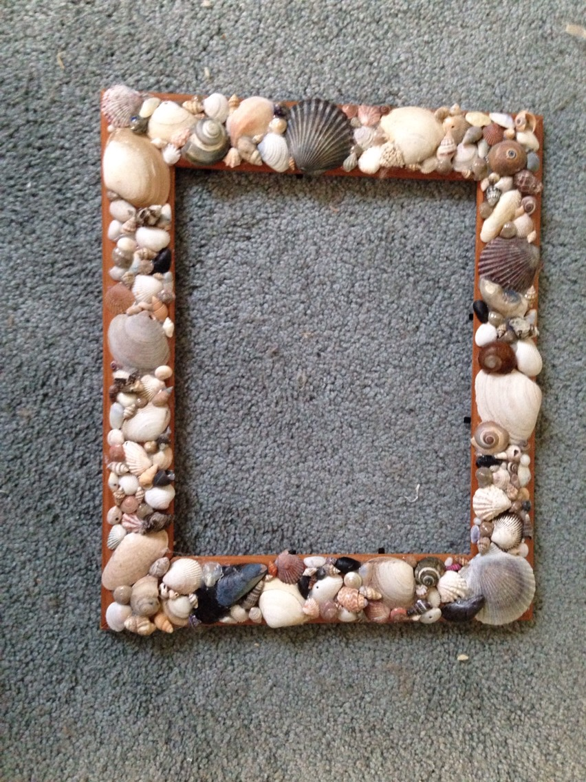 Diy Seashell Picture Frame By Brianne Taylor Musely