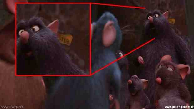 """It was on a tag on one of the rats in """"Ratatouille."""""""