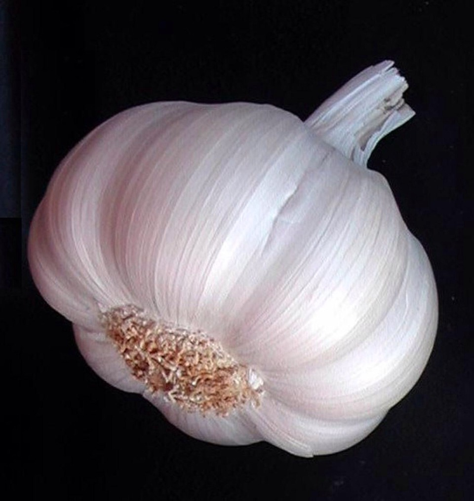 Cut a half garlic and apply it to your acne or zit or white head or pimple then wash it off