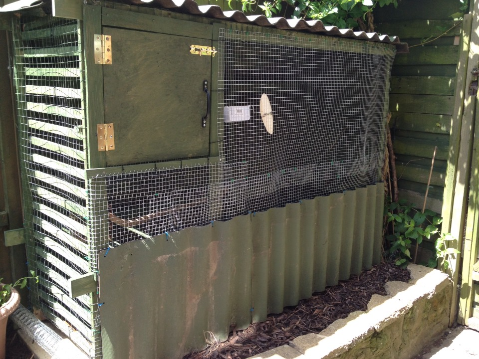 Perfect aviary which was so cheap to make from left over wood correlated roofing left over paint and the wire mesh was from a pound store and the hinges and handle for door