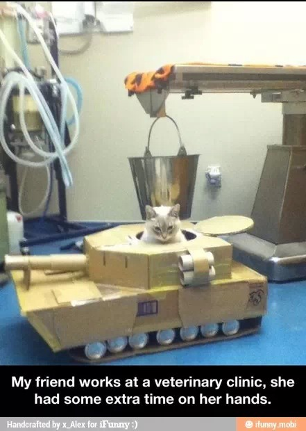 Make a tank for your furry friends.