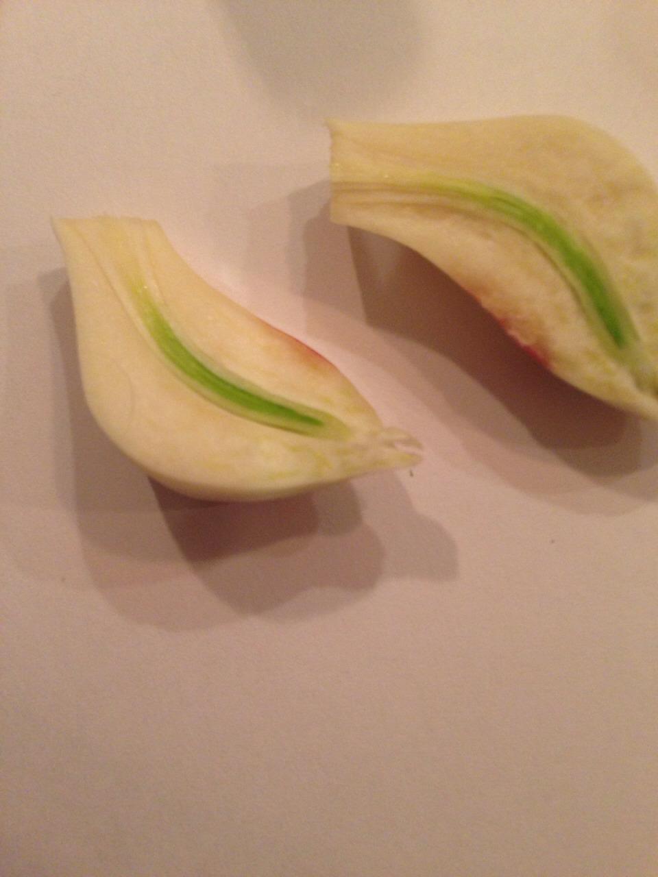 Cut a clove of garlic in half
