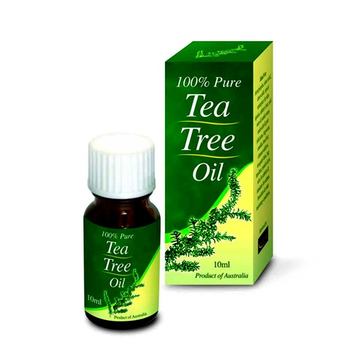 "Get a water bottle and mark ""Tea Tree Water"" and mix a few drops of tea tree into water and spray in child's hair, paying special attention to neck and behind the ears in the morning. The nasty lice hate tea tree and will avoid your child. Make sure not to make mixture too strong as its a foul smell"