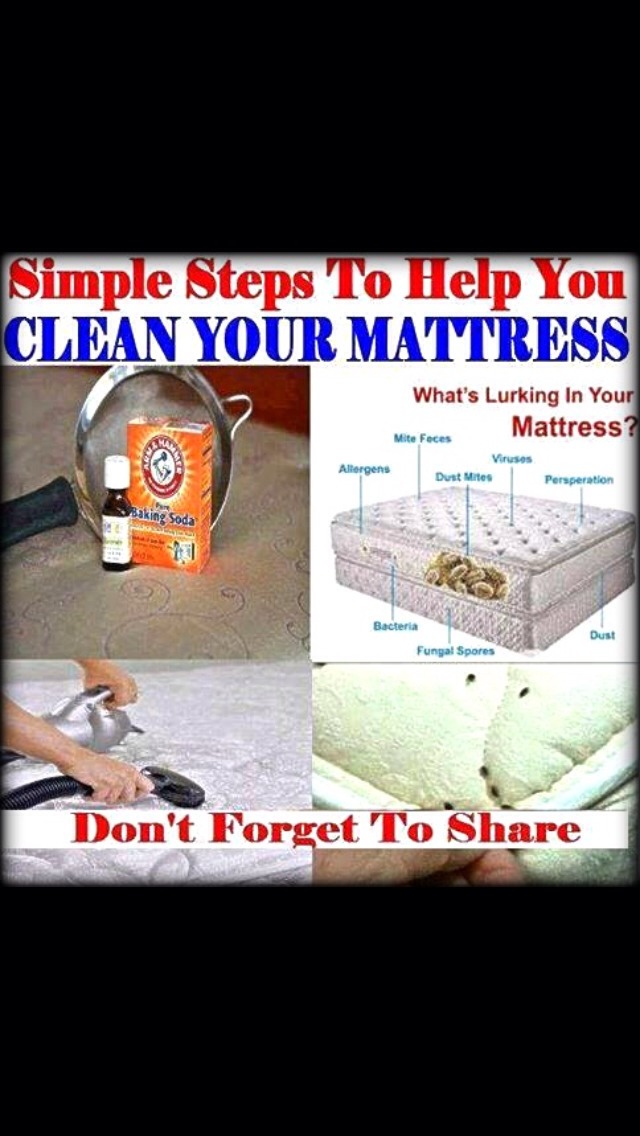 You can have all kinds of icky stuff in your mattress such as mite feces, dust mites, viruses, bacteria, perspiration, fungal spores, & dust. Your mattress can double in weight after 10 years! Here's a simple and easy way to effectively clean your mattress: